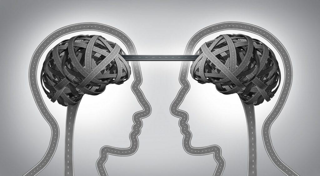 BrainConnected